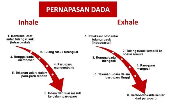 Pengaturan Napas Saat Berolahraga Indonesia Fitness Trainer Association
