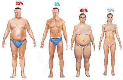 Image result for berat air berat lemak